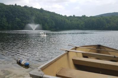 Tall Timbers Lake