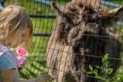 Pleasant Acres Child with Donkey