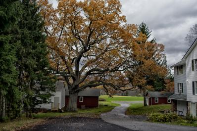 Van Kirk Homestead Grounds 2