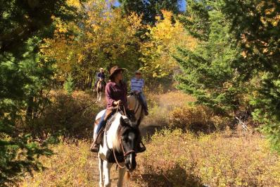 Trail ride through fall colored forest