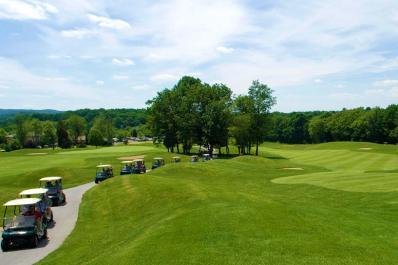 Black Bear Golf Club Carts