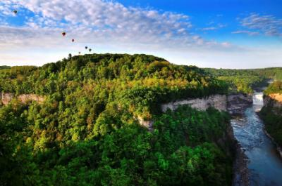 Livingston Letchworth Balloons Landscape Pic