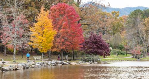Late Fall Color at Lake Tomahawk