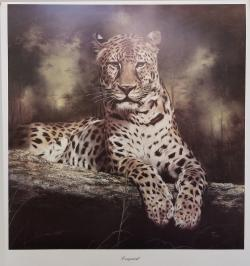 Art Print: Leopard by Sonia Torres