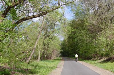 Bicyclist on Rail Trail