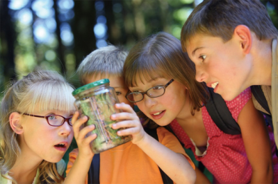 Children gaze in wonder at a creature in a jar while outdoors in Knoxville, TN