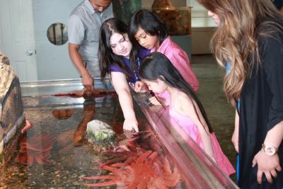 Spend a Day in Des Moines, Washington, Marine Science Center Aquarium