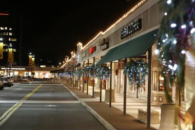 Stuyvesant Plaza Winter