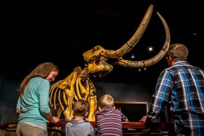 state-museum-of-pa-harrisburg