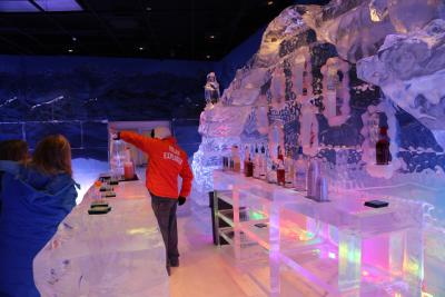 Polar Play Ice Bar