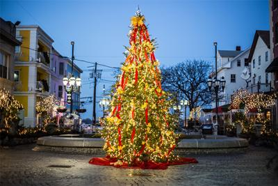 Federal Hill lit up Christmas Tree