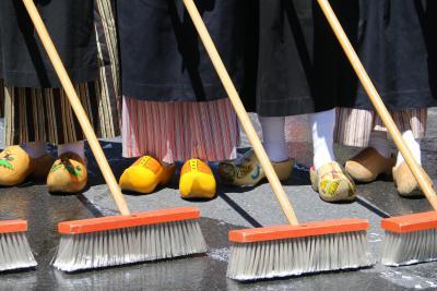 Albany Street Scrubbing