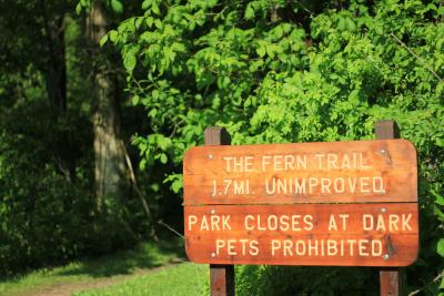 Trail signage and lush green forest at Clear Creek Metro Park in Hocking Hills