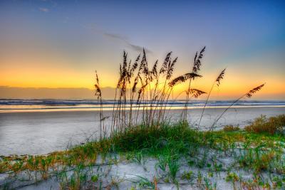 Daytona Beach Dunes at Sunrise