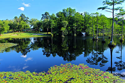Cypress Lakes Golf Course