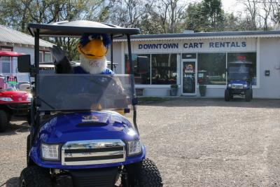 A mascot sitting in a blue golf cart parked in front of a building.