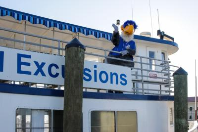A person in a bird costume stands on the top deck of a docked ship.