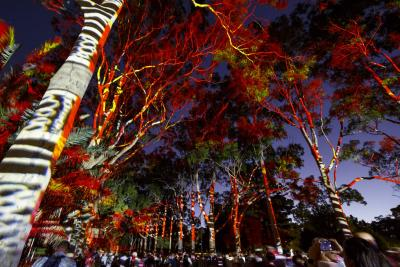 PAV Wraps Up Perth Festival
