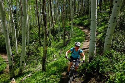 Wild Rose Trail on Emerald Mountain outside of Steamboat Springs