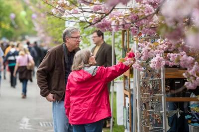 2017 Lilac Festival Art In The Park