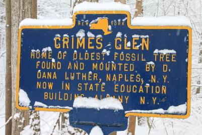 The sign for Grimes Glen covered in snow