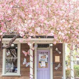 Spring at Gardner Village