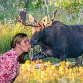 I Kissed A Moose And I Liked It