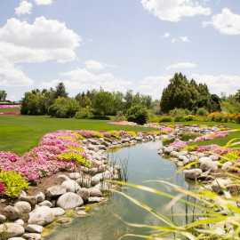 Ashton Gardens Summer