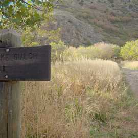 Rattlesnake Gulch trail marker, photo by Brant Hansen