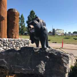 Yellowstone Bear World_0