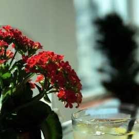 The Garden Restaurant_1