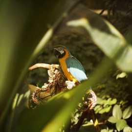 Loveland Living Planet Aquarium_2
