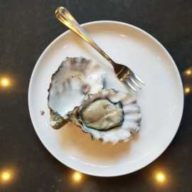 Current Fish & Oyster_2