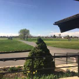 Mountain View Golf Course_2