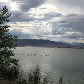 Utah Lake State Park_2