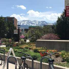 The University of Utah_2