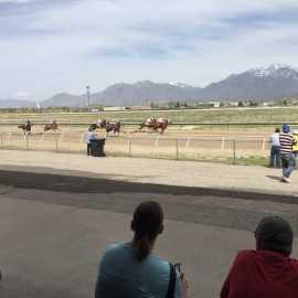 Salt Lake County Equestrian Park_2