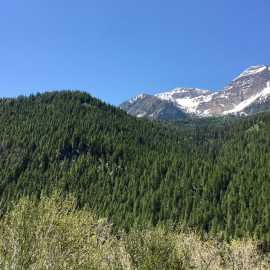Wasatch Mountain State Park_1