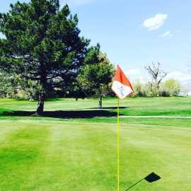 Rose Park Golf Course_0