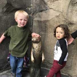 Utah's Hogle Zoo_2