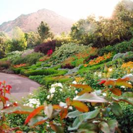 Earth Day Spring Garden Tour