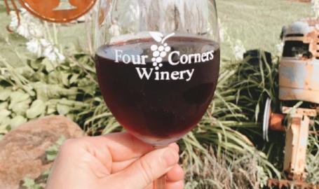 Winereis6