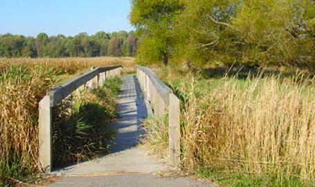 Bluhm Park trail - Westville