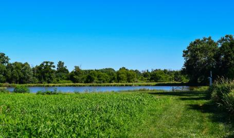Brookdale Park Chesterton