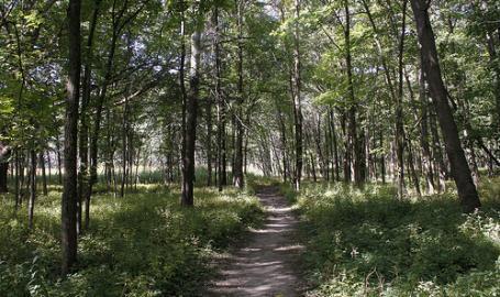 Calumet Trail