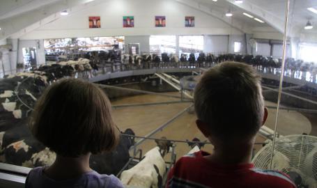 Fair Oaks Farms Dairy Adventure