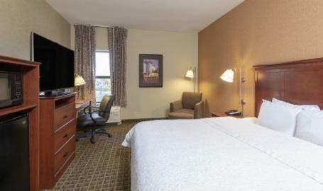 Hampton Inn & Suites Hotel Valparaiso King Room