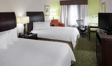 Hilton Garden Inn Merrillville Hotel double