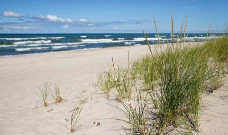Beach at Indiana Dunes National Park