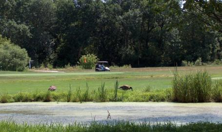 Cedar Creek Family Golf Course Cedar Lake